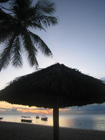 Castaway Island Fiji: Just heaven!