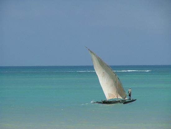 Diani Beach, Kenya: ngalao at diani