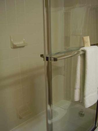 Rocky Gap Casino Resort: Shower