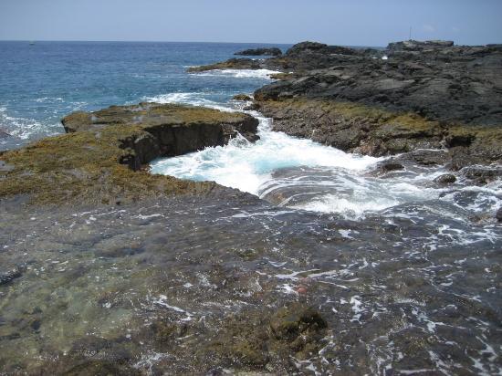 Kealakekua Bay Marine Preserve