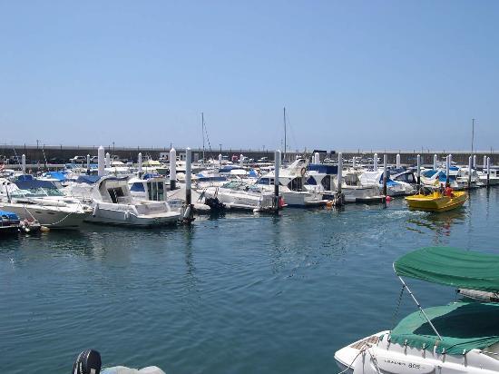 Abeque Turismo Activo: Los Gigantes Harbour