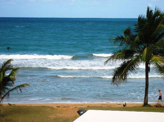 Luquillo Sunrise Beach Inn: the view from our balcony