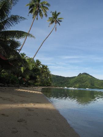 Nukubati Private Island: Picture-perfect beach
