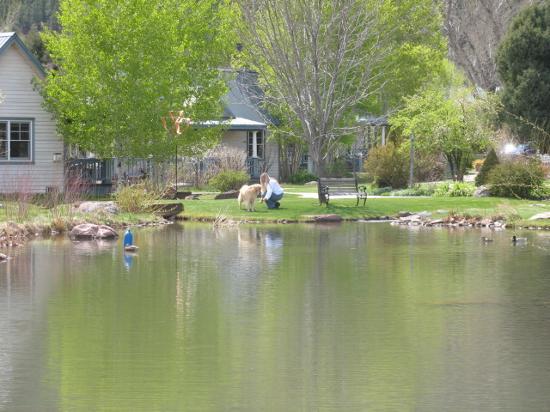 Apple Orchard Inn: Across the Pond