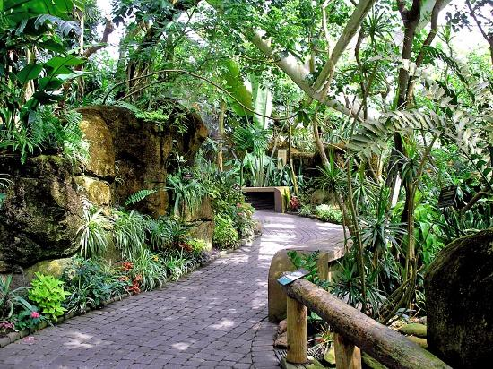 Moody Gardens Hotel Spa & Convention Center: Inside Rainforest Pyramid, Moody Gardens