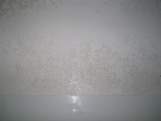 Araamda Inn: Dirty Bathtub