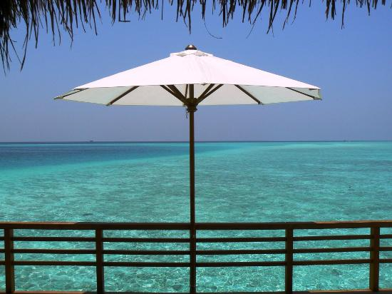 Baros Maldives: I told you the water was lovely