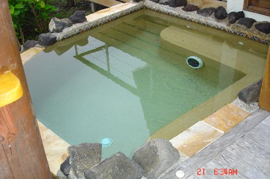 Royal Davui Island Resort: Our Private Plunge Pool, Royal Davui