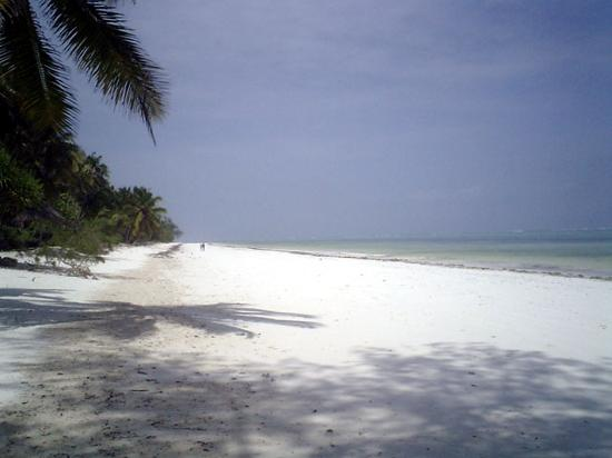 Andy's Karibuni Romantic Garden: Bwejuu Beach