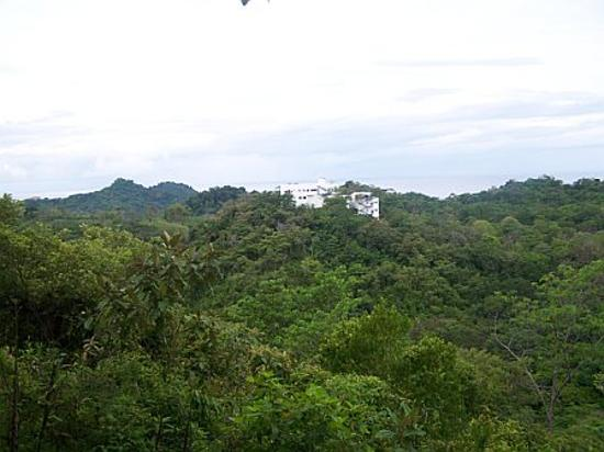 Gaia Hotel & Reserve: The view toward Gaia from atop the Gaia Reserve