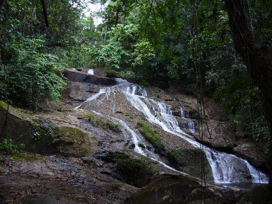 Hopkins, Belize: Hiking Nearby