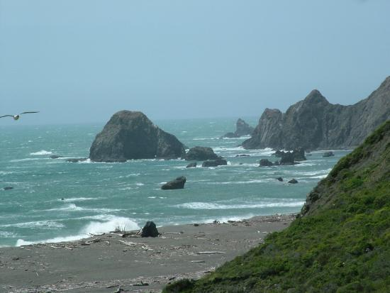 Jenner, Californië: Nearby Goat Rock Beach