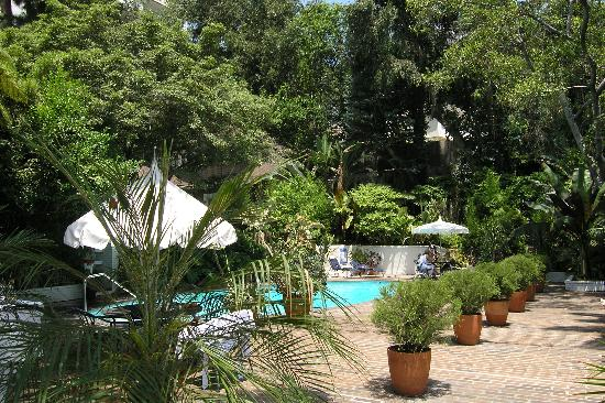 Chateau Marmont: pool