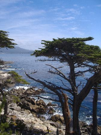 Monterey County, Californie : Coastline