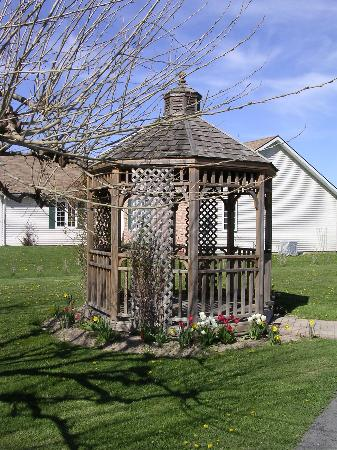 Arbour Breeze Bed & Breakfast: Gazebo on the property