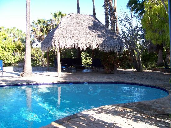 Hacienda Todos Los Santos: Pool and Palapa at the hacienda