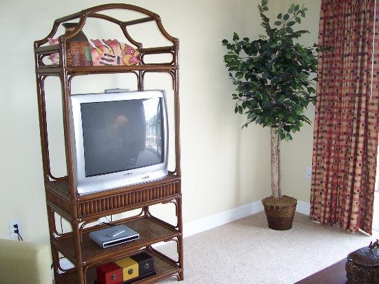 Madeira Bay Resort: TV Center in Living Room Area (with a DVD Player!)