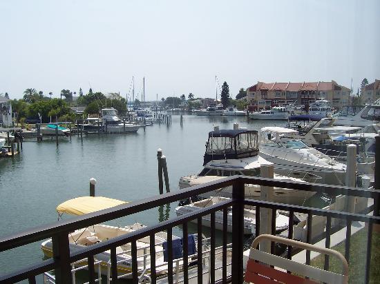 Madeira Bay Resort: Marina View from Balcony