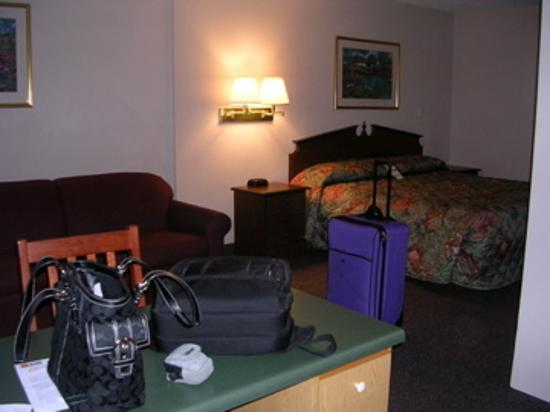 Crestwood Suites Extended Stay Hotel: Our room