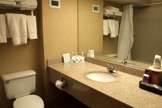 Holiday Inn Express Flagstaff: Bathroom