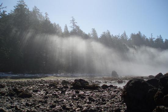 morning mist along the beach at ozette picture of ozette loop hike