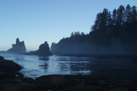 Clallam Bay, WA: Dawn at Shi Shi