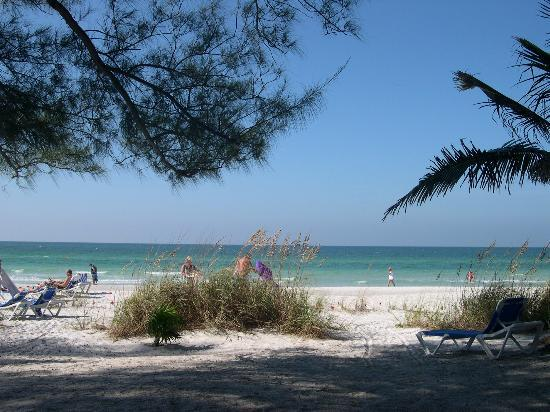 Holmes Beach, FL: view from angelinos