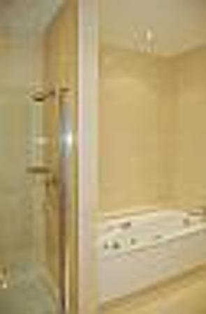 Castlewood House: bathroom with jacuzzi tub