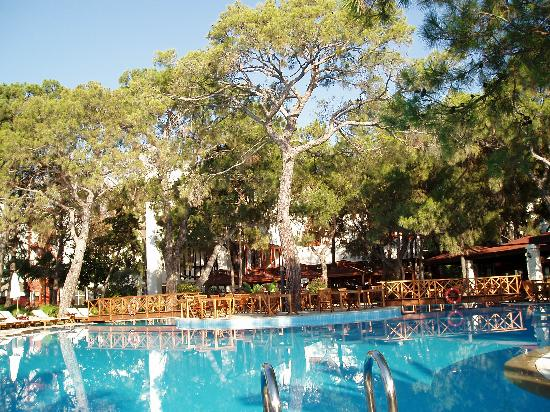 Otium Hotel Life: Activity Pool and gardens and bar