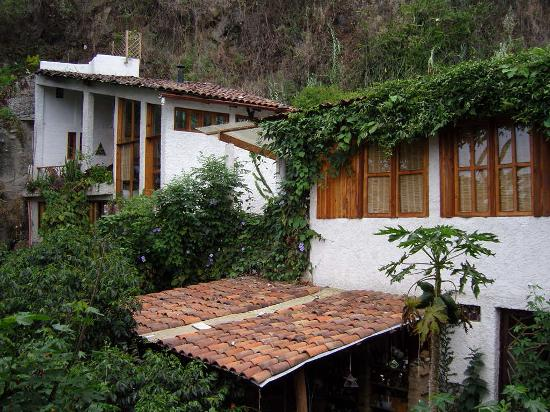 Lush Atitlan/Hotel Aaculaax : The suites