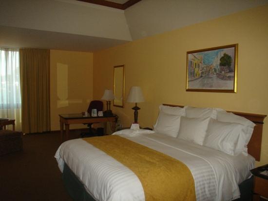 Tegucigalpa Marriott Hotel: Bed