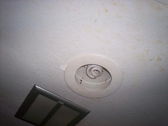 Red Roof Inn Williamsburg : exposed electricity over shower