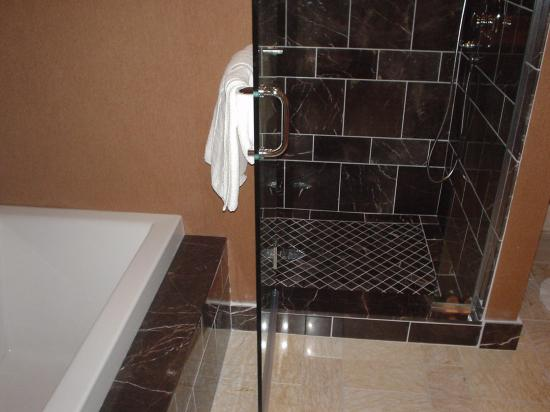 The Rocky River Inn: shower/tub