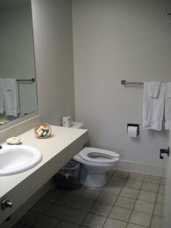 Harris Ranch Inn : Bathroom