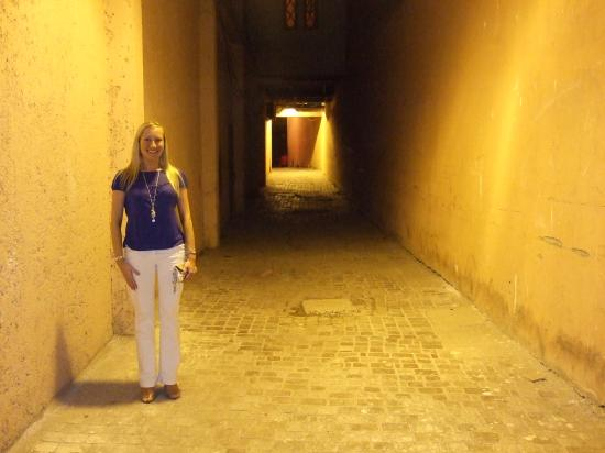 Dar Charkia : walkway in the medina