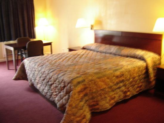 Executive Inn: King size bed