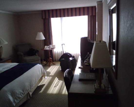 Chicago Marriott at Medical District/UIC: King Room