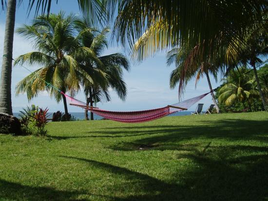 Hotel Amor de Mar: Le jardin