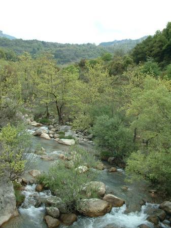 Dimitsana, Greece: Lousios Gorge