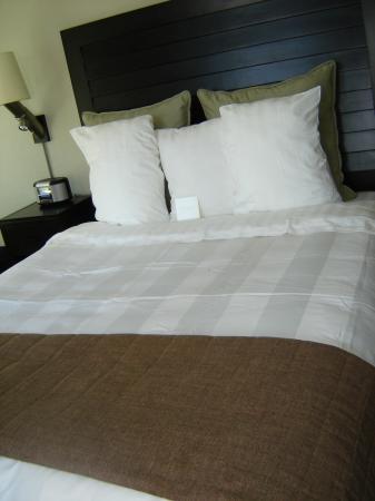 The Sofia Hotel: Room interior