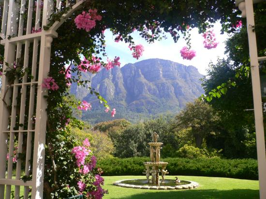 Vineyard Hotel: Stunning view & Garden