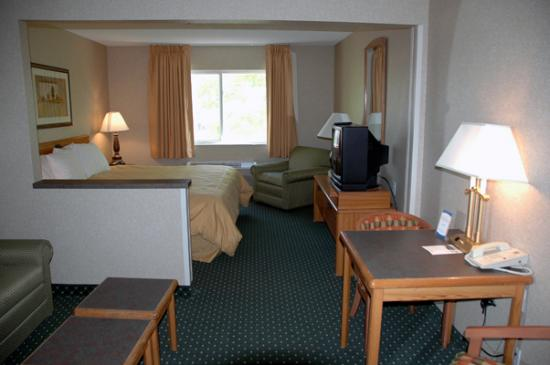 Comfort Inn & Suites North: Our Suite
