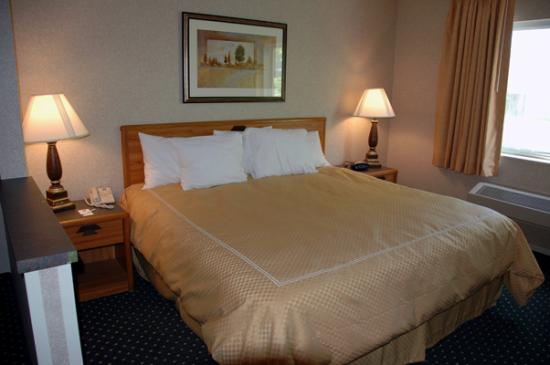 Comfort Inn & Suites North: The Bed (note chipped room divider)
