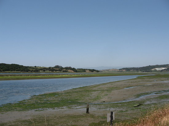 ‪Elkhorn Slough National Estuarine Research Reserve‬