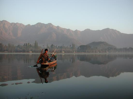 Srinagar, India: Dal Lake - Man in his shikara
