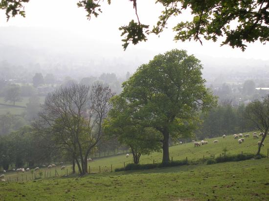 Hilden Lodge: After walking up a steep climb, you're rewarded with a view over Charlton Kings