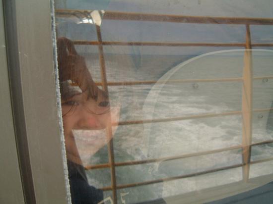 Notre petite puce se reposant du vent l 39 int rieur for A l interieur 2007