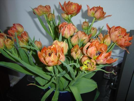 The Collector Bed & Breakfast: Flowers