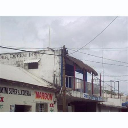 Hotel Agave Azul: Palma Dorado Inn from Street