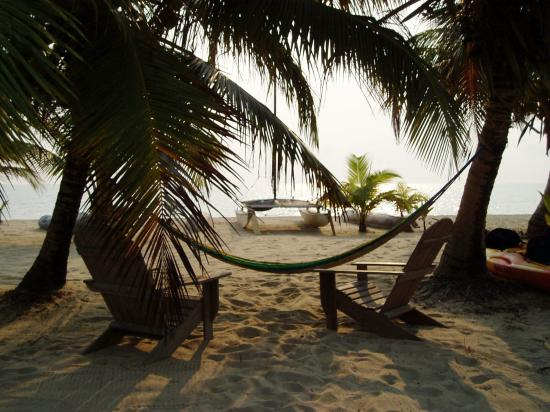 Westwind Hotel on the Beach: hammocks for guests